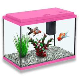 Kids Fish Tanks