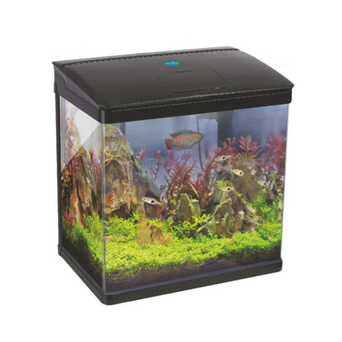 Small Tank and Nano Aquariums