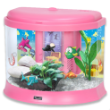 Childrens Fish Tank with Money Box! 3 Colours