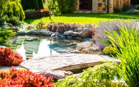 Essential Pond Maintenance For Autumn