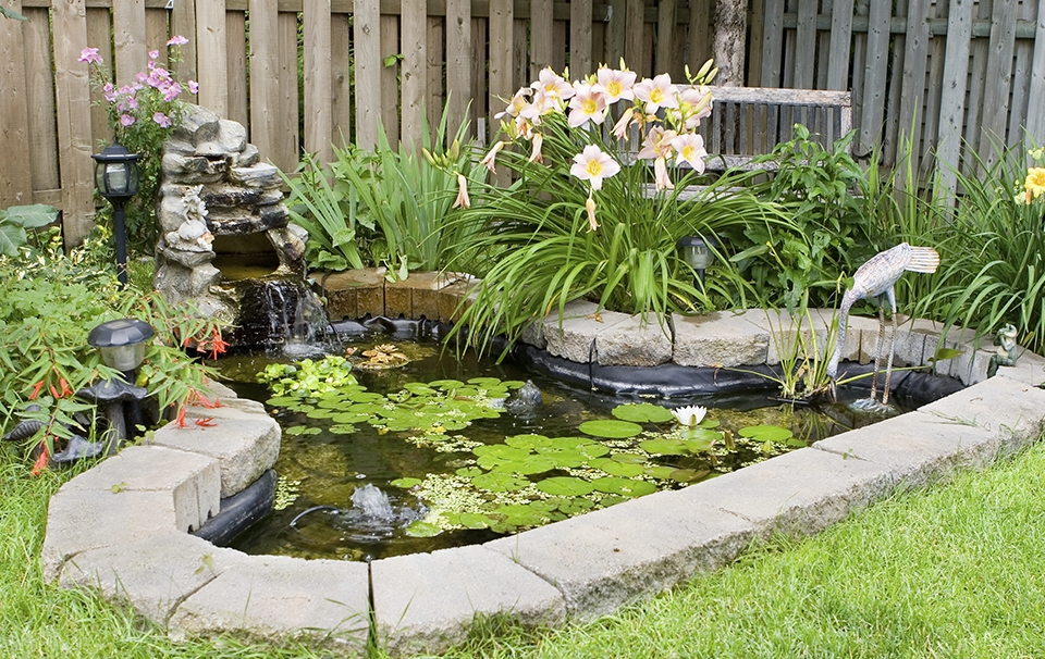 Fountain ECO Pond Pump Low Wattage Koi Fish Filter Waterfall All Pond Solutions